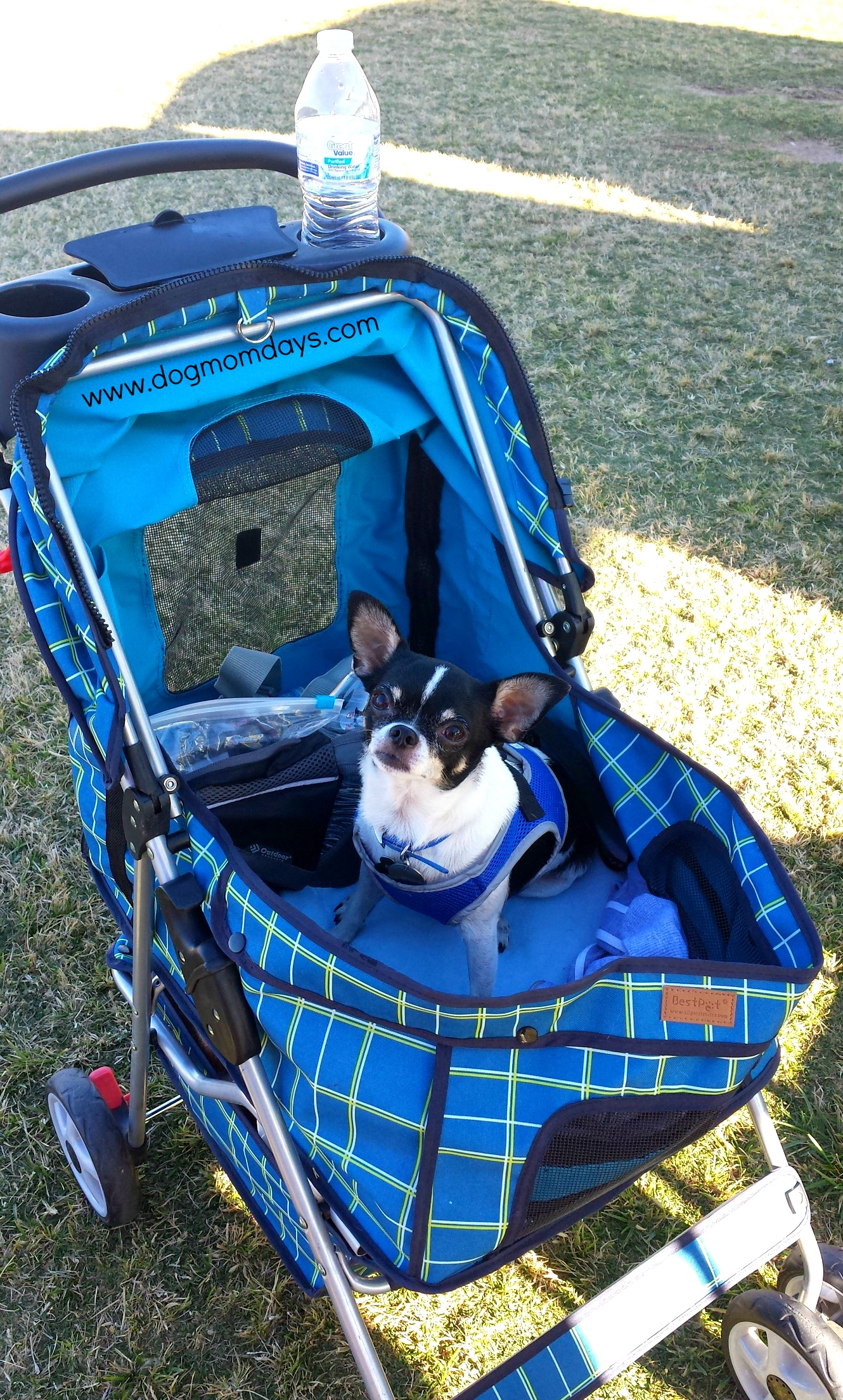 the benefits of using a dog stroller