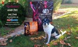 Save Money on Wellness Grain-Free Dog Food at PetSmart! #GrainFreeForMe
