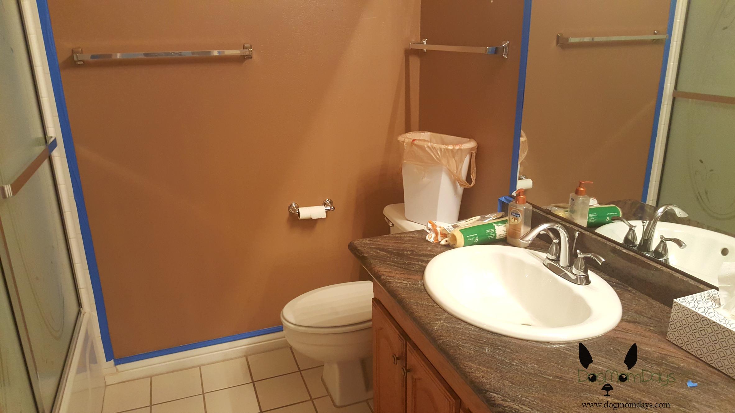 Dog mom life bathroom redesign killer ants and backyard for Bathroom redesigns