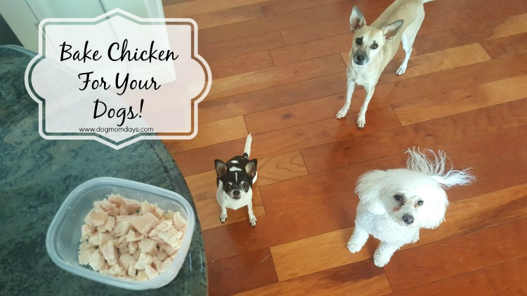 bake chicken for dogs