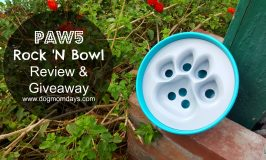 Turn Mealtime Into Playtime With the PAW5 Rock 'N Bowl: Review & Giveaway