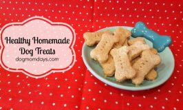 4-Ingredient Healthy Homemade Dog Treats