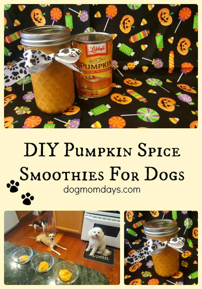 pumpkin spice smoothies