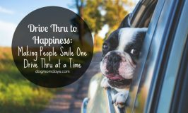 Drive Thru to Happiness