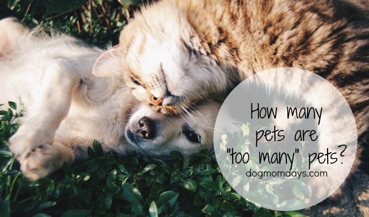 too many pets
