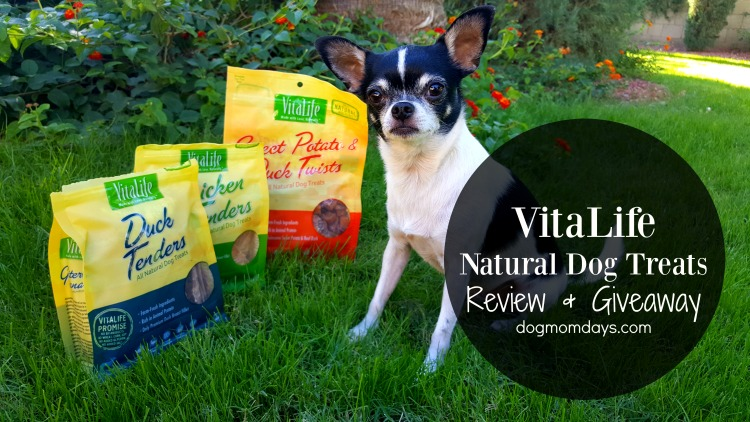 VitaLife All Natural Dog Treats Review & Giveaway!