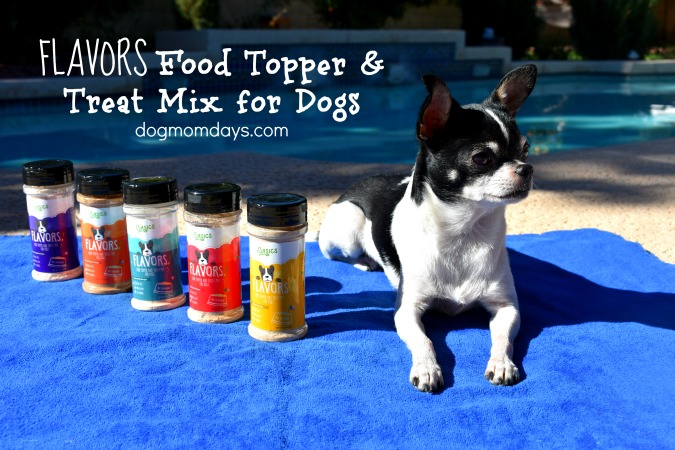 Make Dry Kibble Irresistible With Basics FLAVORS Food Toppers – Review & Giveaway