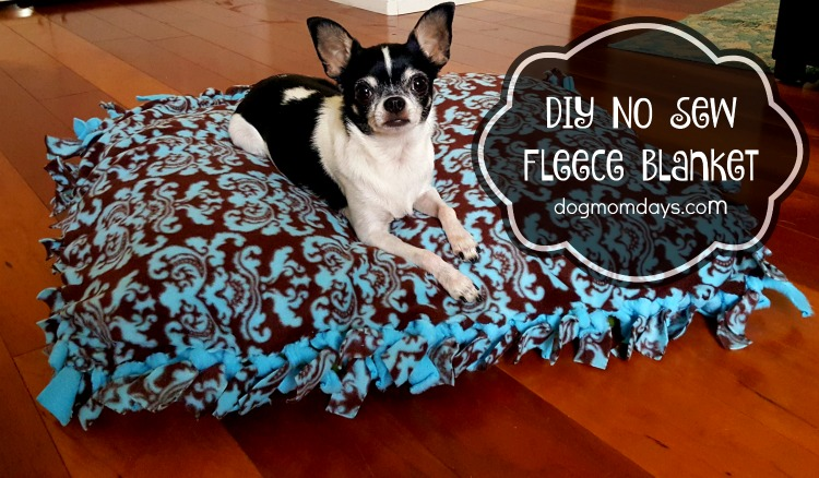 Diy No Sew Fleece Blanket Archives Dog Mom Days