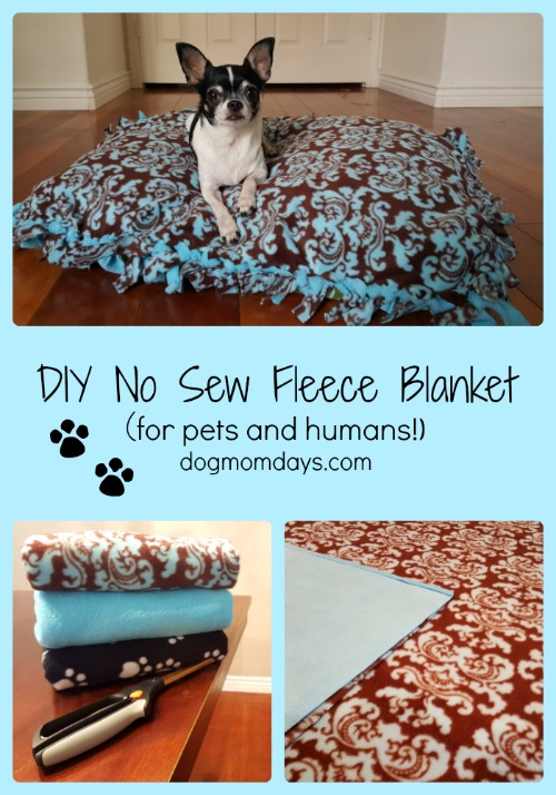 Diy No Sew Fleece Blanket For Pets And Humans Giveaway Dog