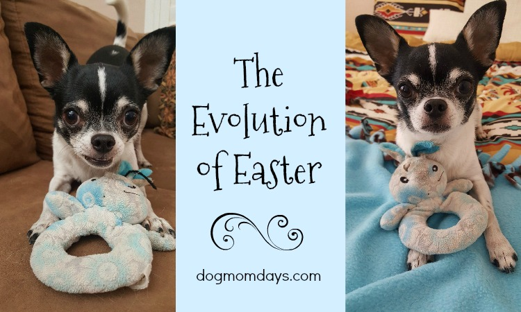 The Evolution of Wynston's Easter Bunny
