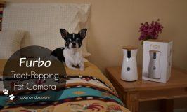 Furbo Dog Camera Review + Discount Code!