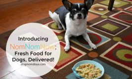 Home-Cooked Food for Your Dog Without the Hassle; NomNomNow Review