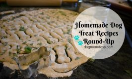 Homemade Dog Treat Recipes Round-Up