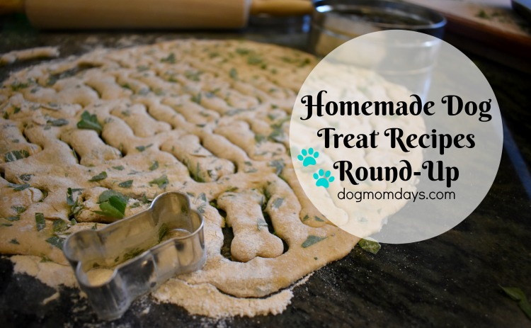 homemade dog treat recipes round up