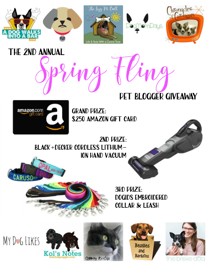 2017 Spring Fling Pet Blogger Giveaway