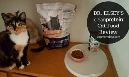 Dr. Elsey's cleanprotein™ Cat Food Review