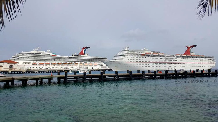 Carnival Paradise and Carnival Triumph
