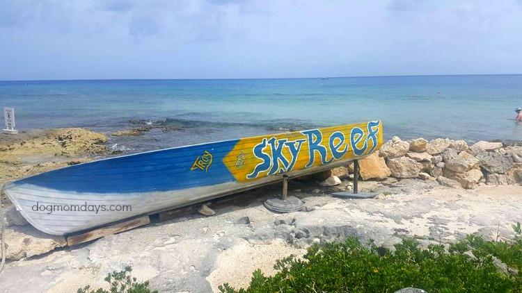 Sky Reef in Cozumel, Mexico