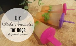 DIY chicken pupsicles for dogs
