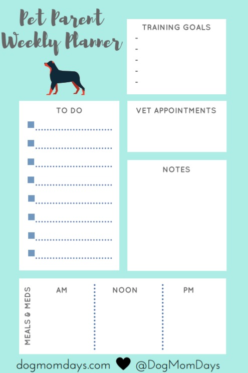 dog mom planning