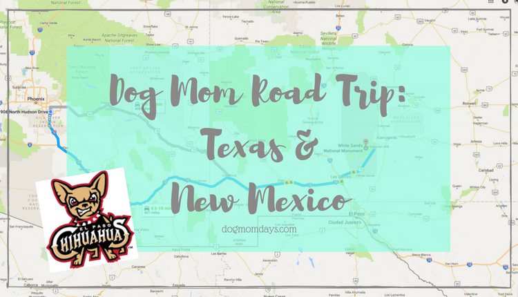 dog mom road trip