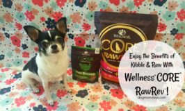 Introduce Raw to Your Dog's Diet With Wellness® CORE® RawRev™!