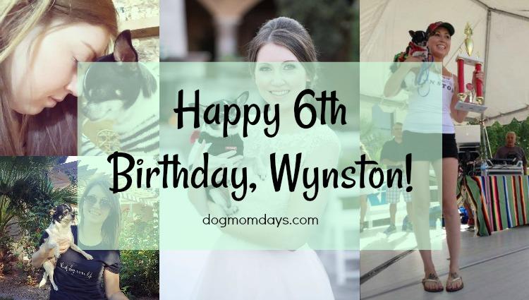 Wynston's 6th birthday