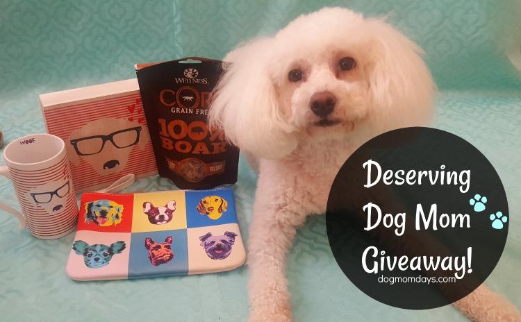 deserving dog mom giveaway