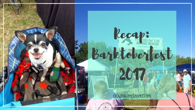 Welcoming Fall with Barktoberfest 2017