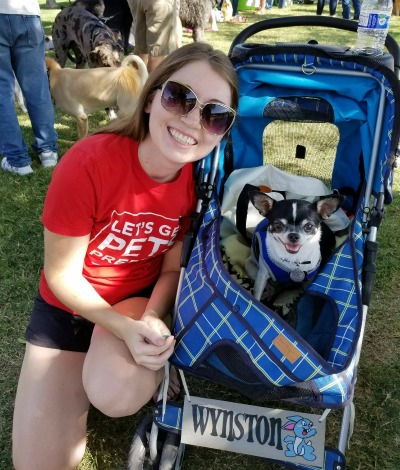 Arizona pet events