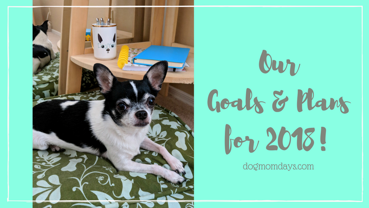 Our Goals & Plans for 2018!