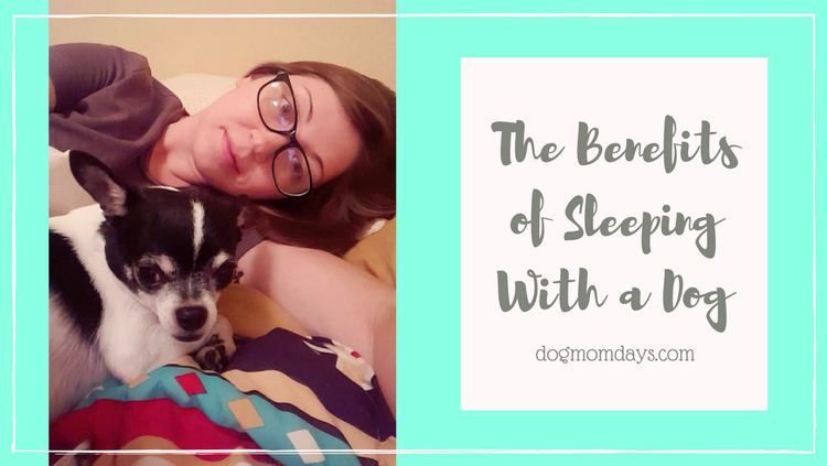 the benefits of sleeping with a dog