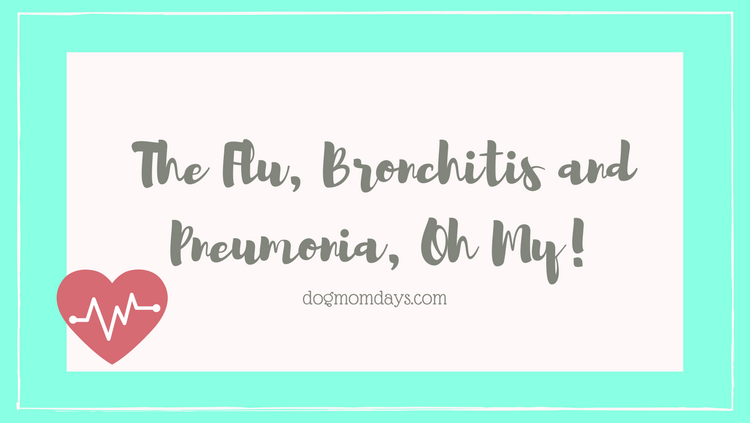 the flu, bronchitis and pneumonia