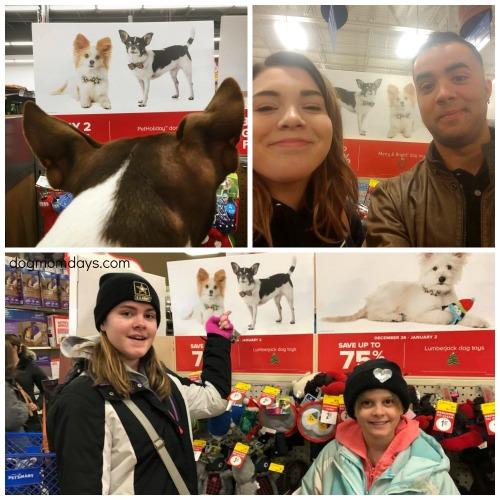 Wynston PetSmart sightings