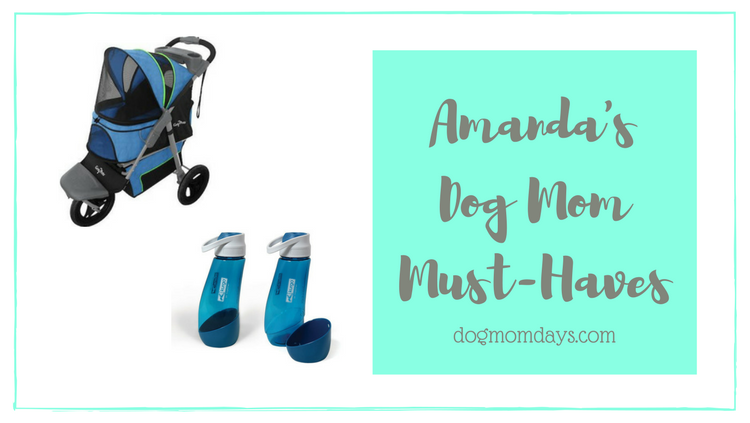 dog mom must-haves