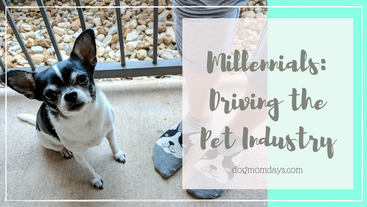 How Millennials Have Changed the Pet Industry
