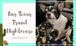 Our Texas Travel Nightmare