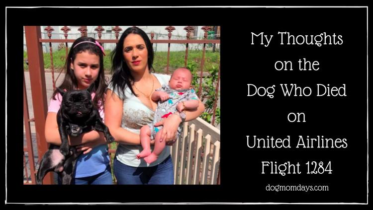 United Airlines Flight 1284