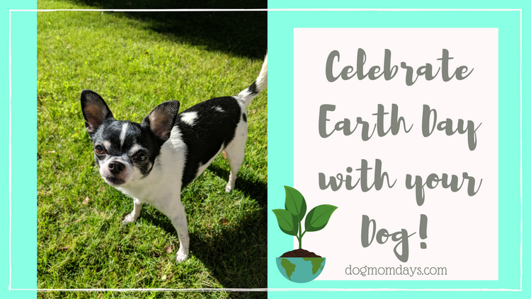 Earth Day with your Dog
