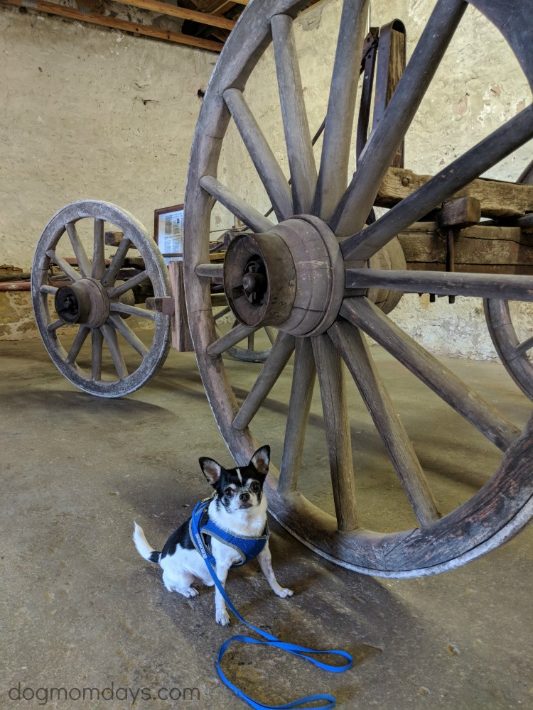 Dog-friendly Fort Concho