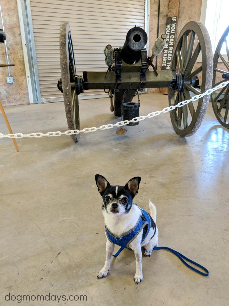 Dog-friendly Fort Concho