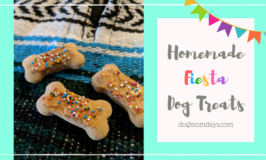 Recipe: Homemade Fiesta Dog Treats With Hemp Infused Coconut Oil
