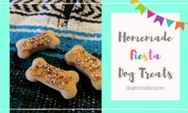 Recipe: Homemade Fiesta Dog Treats With Hemp Infused Coconut Oil