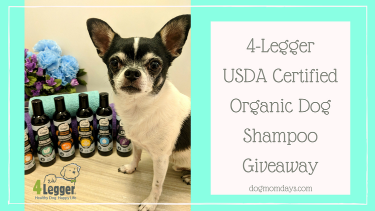 Getting Ready for SuperZoo With 4-Legger USDA Certified Organic Dog Shampoo + Giveaway