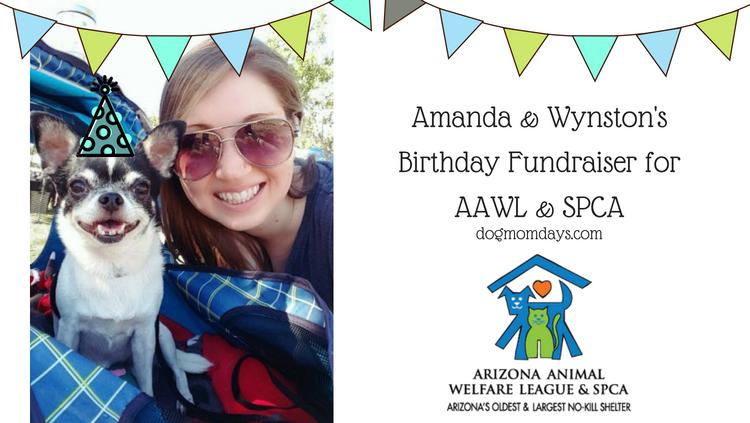 AAWL & SPCA Fundraiser + Paw Print Art From Wynston!