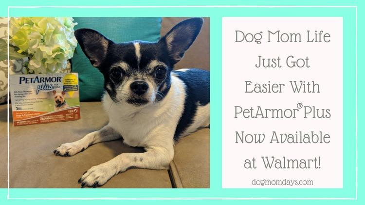 My Dog Mom Life Just Got Easier With PetArmor® Plus Available at Walmart!