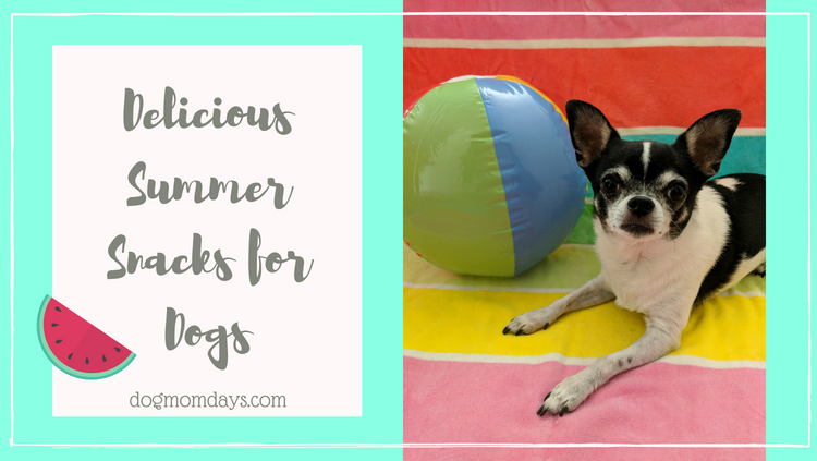 10 Delicious Summer Snacks for Dogs