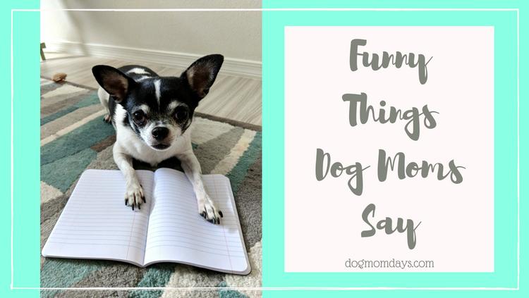 funny things dog moms say