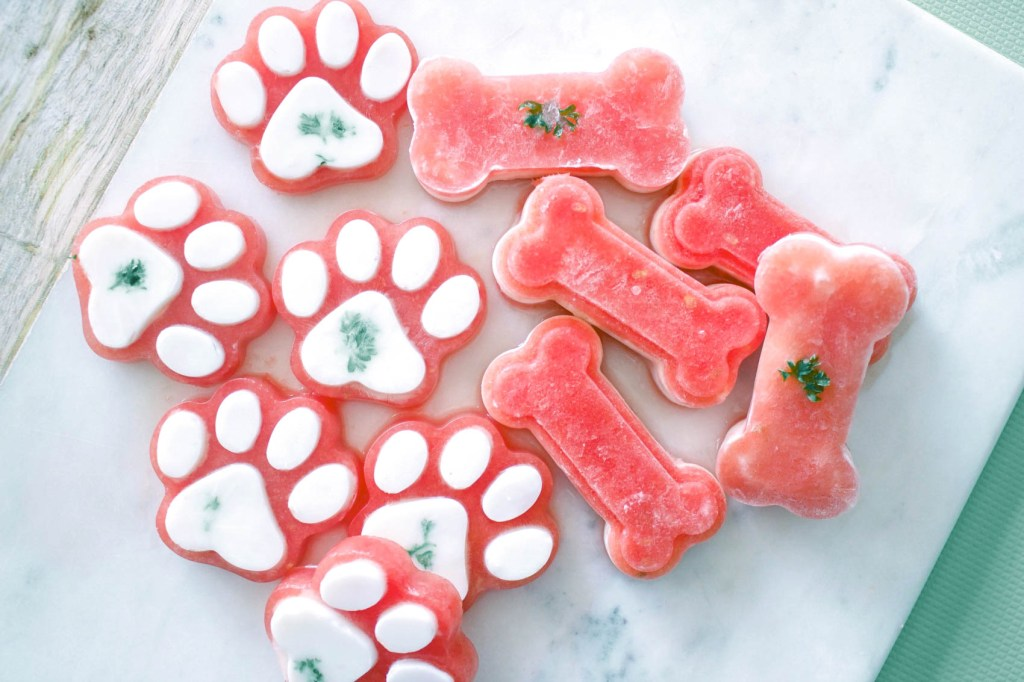 delicious summer snacks for dogs
