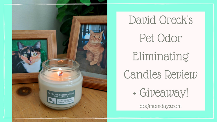 David Oreck's Pet Odor Eliminating Candles review